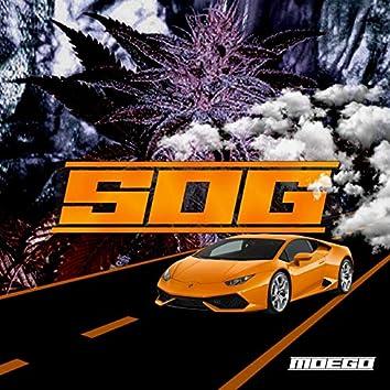 S O G