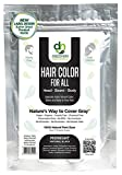 Hair Color For All by Discovery Naturals | Natural Hair Dye For Men & Women I 100% Natural & Chemical-Free Pure Hair & Beard Color, Midnight Natural Black