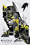 DC Comics Poster Batman 80th Anniversary (61cm x 91,5cm) +
