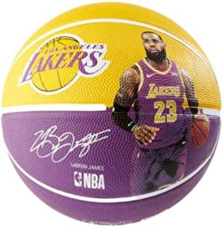 Best lebron james outdoor basketball Reviews
