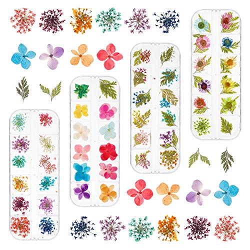fanshiontide 48 Gitter Nagel Getrocknete Blume, Natrliche getrocknete Blumen fr Nail Art 3D Nail Art Zubehr Kits fr Nail Decor