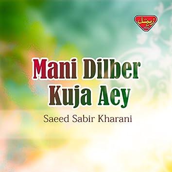 Mani Dilber Kuja Aey