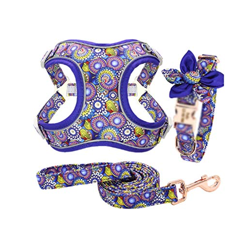 ZYING Juego de cinturón de Cuello de Pet de Nylon Juego de Cuello Personalizado Ajuste de Mascotas Agarre de Mascotas Cuerda (Color : C)