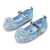 Eleasica Par de Zapatos Planos con Plantilla con Estampado de Princesa Elsa, Zapatillas de Lentejuelas para Disfraz de Princesa, Zapatos de Cristal de Cenicienta para niñas de 3 a 12 años