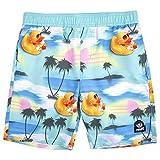 NEFF Men's Boy's Daily Hot Tub Surf Swim Board Shorts, Mint, Large