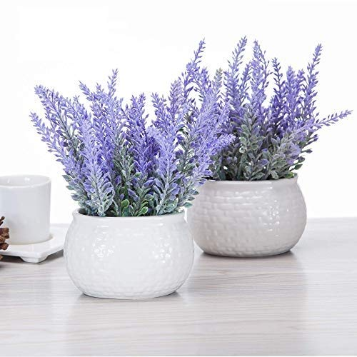 Artificial Mini Potted Flowers Plant Lavender for Home Decor Party Wedding Garden Office Patio Decoration (Ceramics 2set)
