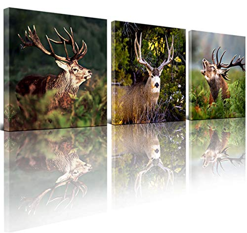 """Canvas Wall art Animal art Deer picture Bathroom Photo Wall decoration Wildlife pictures Home decor Deer wall art Canvas photo 12x12""""x3 panel Canvas print Living room Bedroom Office Wall art"""