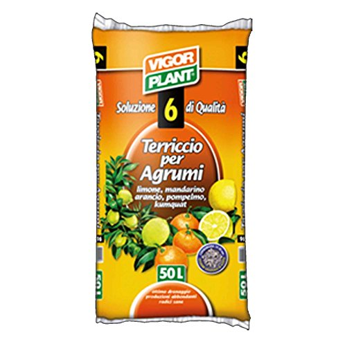 Vigor Plant Terriccio per Agrumi Limone Mandarino Arancio Pompelmo - 45 lt - Terriccio universale per Agrumi