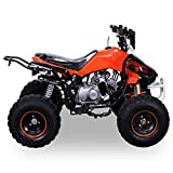 Kinder Quad 125 ccm orange/weiß Panthera - 8