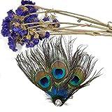 Dusenly Pinzas de pelo de plumas de pavo real para disfraz de boda, accesorios para mujeres y niñas