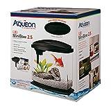 Aqueon BettaBow LED Kit Black 2.5 Gallons