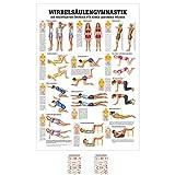 Sport-Tec Wirbelsäulengymnastik Mini-Poster Anatomie 34x24