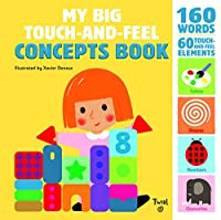My Big Touch-and-Feel Concepts Book (Touch-and-Feel Books, 2)