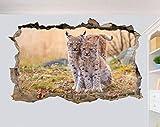 TJJS Wandtattoos Wilde Natur Luchs 3D-Effekt Kunst Poster