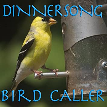 Dinnersong Bird Calls--Call Birds to Your New Bird Feeder by Playing over a Loud Speaker in a Loop!
