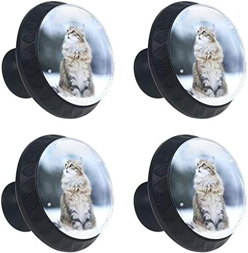 4 Pack Round Kitchen Cabinet Knobs Eyes Max 76% OFF Cat 100 1-37 Snow Pulls OFFicial shop