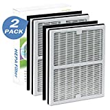 2 Pack IAF-H-100A True Hepa & Carbon Filter Set for Idylis Air Purifiers...