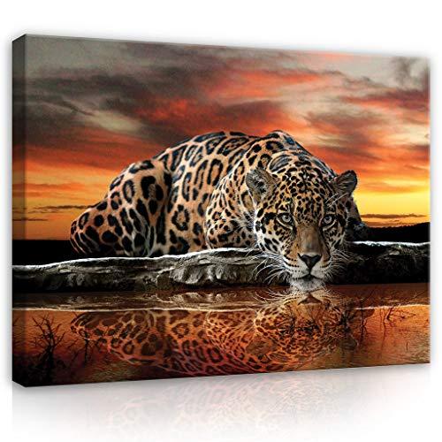 FORWALL Leinwandbild Kunstdruck Wandbild Dekoshop Jaguar und Sonnenuntergang ADPP101 O1 (100cm x 75cm) Canvas Picture Print