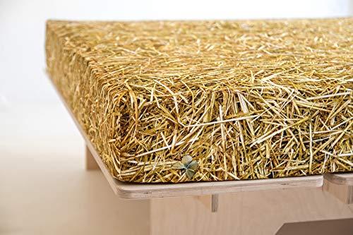 FOONKA HAYKA, Spannbettlaken aus Jersey, 90x200 cm, Cotton, Stroh, Beige, Braun
