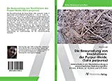 Die Bewurzelung von Steckhoelzern der Purpur-Weide Salix purpurea  Unterschiede in der Wurzelentwicklung in unterschiedlichen Bodenkorngroessen 0-1mm 0-4mm 0 1-0 3mm und 0 5-2mm