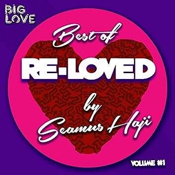 Best Of Re-Loved, Vol. 1
