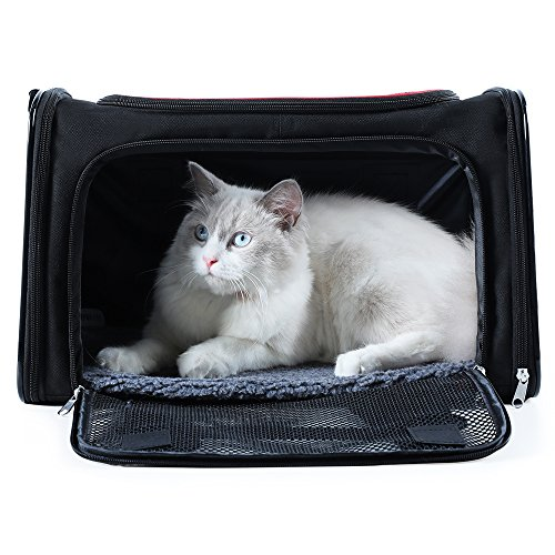 A4Pet Collapsible Pet Carrier for Cat and Dog, Top Load, Soft Side, Sturdy Bottom, Easy Storage