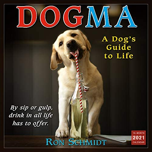 2021 Dogma A Dogs Guide to Life 16 Month Wall Calendar product image