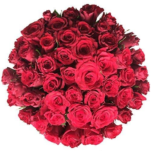 Großer Blumenstrauß XXL mit 50 roten Rosen - Inkl. gratis Grußkarte!