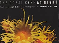 The Coral Reef at Night
