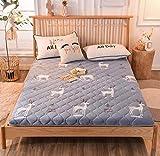 XGHW Colchón de Plumas, colchón cálido, con Lavable y extraíble Cubierta, Ropa de Cama de Cuatro Estaciones, Conveniente for los huéspedes del Hotel, Prueba en casa (Color : C, Size : 120 * 200cm)