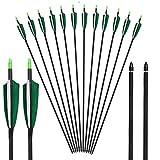 Toparchery Pfeile für Bogenschießen Carbonpfeile 6er Bogen Pfeile Für Bogenschießen