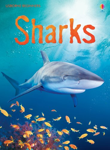 Sharks: For tablet devices: For tablet devices (Usborne Beginners) (English Edition)