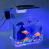 Cocoarm Acryl Aquarium Transparent Aquarien Aquarium Komplett Set Ablaichkasten Fisch