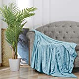 BOURINA Throw Blanket Shiny Decorative Ice Crushed Velvet Throw for Sofa Bed Polyester ,50'x60' Blue