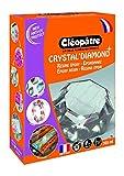 Cleopatre - LCC19-360 - Kit de resina epoxi para inclusión, Crystal'Diamond, 360 ml