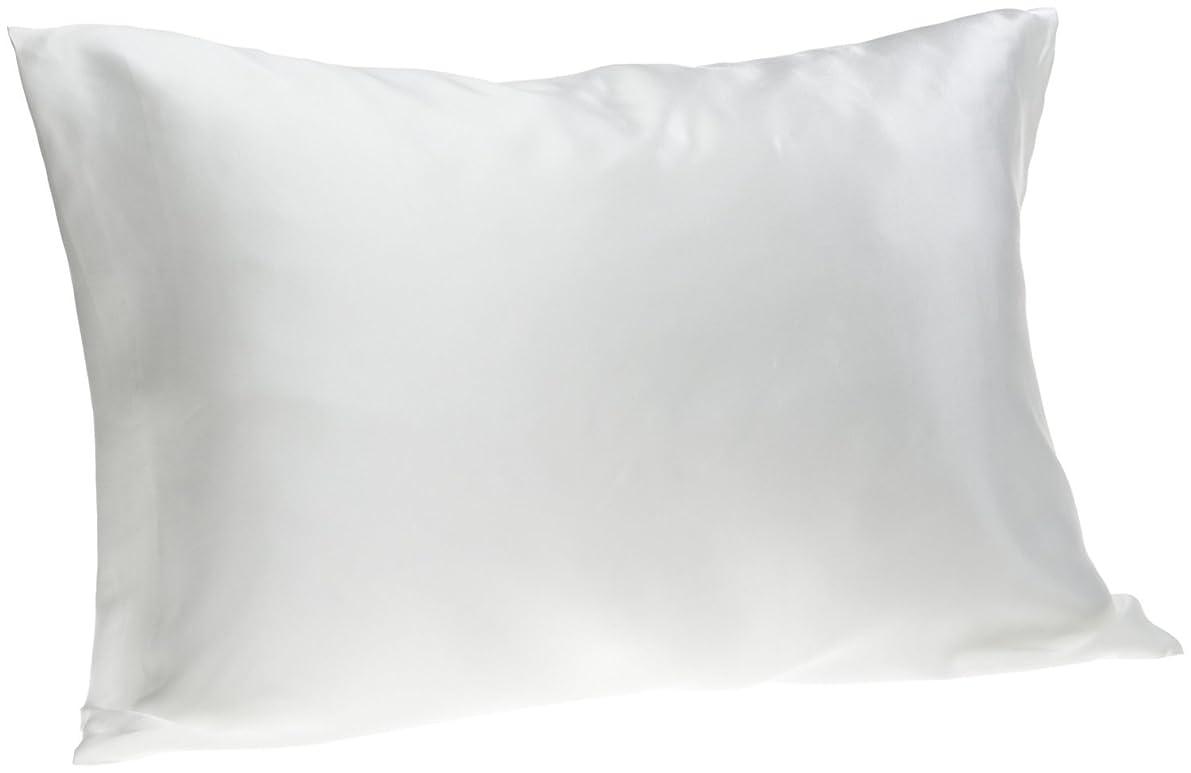 Spasilk Facial Beauty Silk Pillowcase, Queen 20