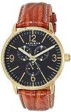 Akribos XXIV Reloj de Cuarzo Man AK769YG 43 mm