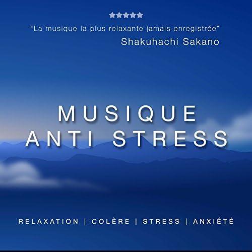 Oasis de Détente et Relaxation & Nature Sound Collection & Musique de Relaxation