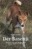 Der Basenji: Das kleine wilde Ding aus dem Busch