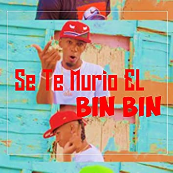 SE TE MURIO EL BIN BIN