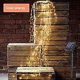 RG-FA Dekorative Twinkle Sternenlichter, 10 Stränge 200 LED Wasserfall Baum Rebe Lichterkette...