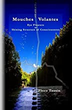 Mouches Volantes - Eye Floaters as Shining Structure of Consciousness