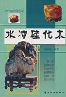 水冲硅化木/当代中华奇石谱