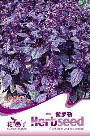 graines de fleurs pourpres graines de basilic vanille bonsaï balcon graines comestibles 50 pcs / sac de graines d'emballage d'origine pour le jardin SeedsAndPlants intérieur