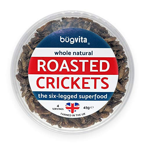 Crunchy Whole Roasted Crickets 45g   Farmed in The UK   Six-Legged Superfood   Edible Insects, Cooking and Snacks