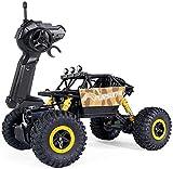 WGFGXQ RC Off-Road Big Tire 1/18 Escala 4WD Monster Truck Aleación Vehículo eléctrico Todo Terreno Hight Speed RC Cars para niños niñas niños Adultos, Doble Motor 2.4G Control Remoto Coche Rock C