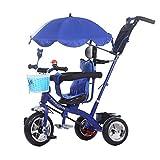 HYDDG Triciclos Niños Bebé Carro para niños Triciclo Bicicleta 1-6 años Antiguo Grande Bebé Muchachas Coche 3 Ruedas Color Morado,Azul