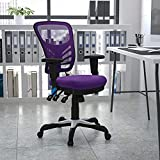 Flash Furniture HL-0001-PUR-GG Mid-Back Purple Mesh Multifunction Executive Swivel Ergonomic Office Chair with Adjustable Arms, 25.75