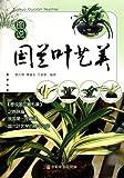 Leaf Aesthetics of Cymbidium in Drawing (Chinese Edition)