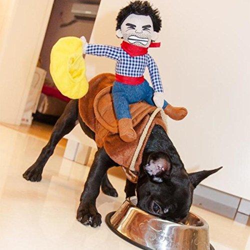 PROtastic Disfraz divertido de vaquero de Halloween para perros (pequeño)
